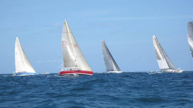 Learn from the Montego Bay Yacht Race Winners before You Join the Race